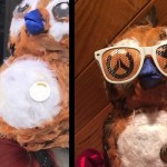 BlizzCrafts: Tracimoc's Pepe cosplay makes a splash at PAX