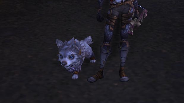frostwolf pup battle pet cute dog header