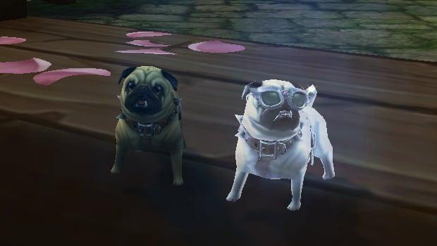 magic pet mirror battle pet perky pug header ab
