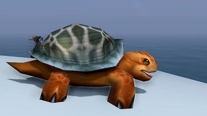 Arcane_Sanctum_header_Turtle