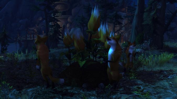 world-quest-foxflower-header