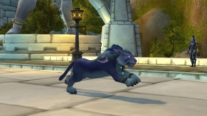 night elf cat form