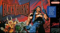 Blizzard, I want a Blackthorne sequel