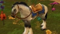 What does it cost to get riding in WoW Classic?