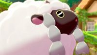 Adorable pictures of whatever a 'Wooloo' is, as selected by someone who knows basically nothing about Pokemon