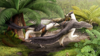 Off Topic: Newly-discovered dinosaur Hesperornithoides miessleri hints at the origins of winged flight