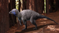 Off Topic: More dinosaurs had feathers than you may think