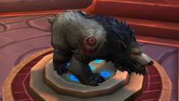 It's our first look at the Worgen Druid form customization options in the barbershop!